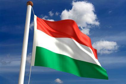 Zeitmanagement Ungarn, Interkulturelles Training
